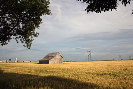 Scenic view of barn and field