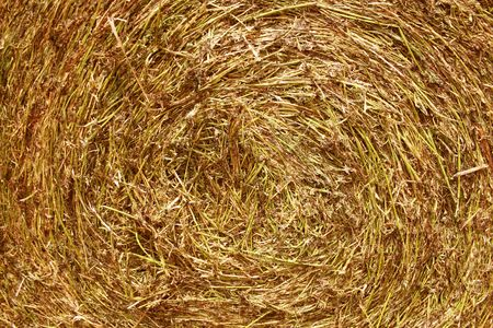 Rolling Haystack. Stock Photo
