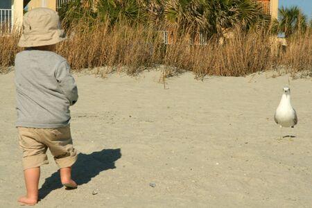 Baby jongen op het zand kijken naar een zeemeeuw