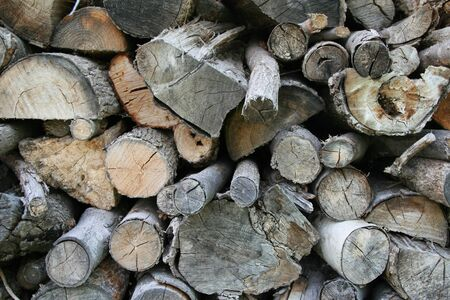 Closeup of a stack of grey logs from tree trunks photo