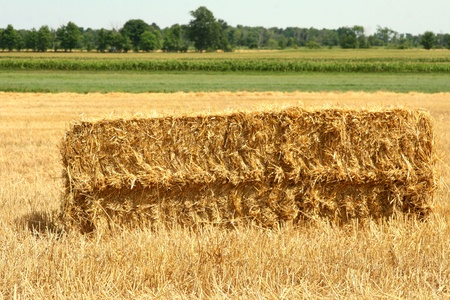 Bale of straw on the ground for pickup
