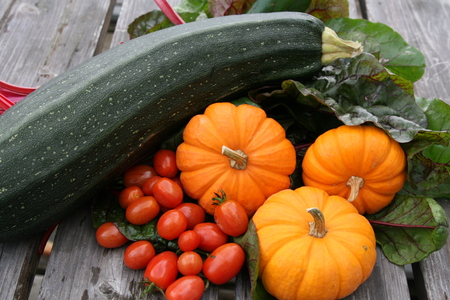 Harvest of miniature pumpkins, chard, zucchini and cherry tomatoes Stock Photo