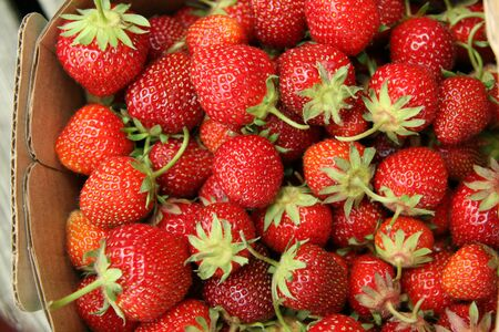 Red juicy strawberries with stems in a basket Stock Photo