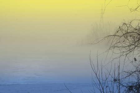 Colorful winter scene