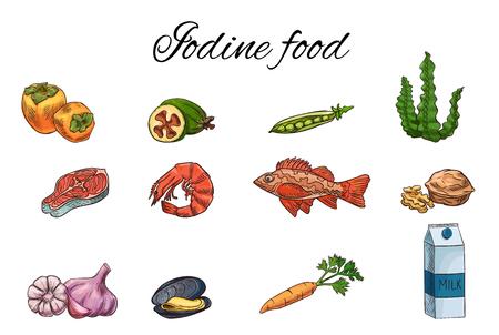 Jeu de croquis de vecteur de nourriture iodée, modèle d'infographie médecine, concept de thyroïde ou de régime de grossesse, kaki, feijoa, bar, lait, carotte, ail, noix, darne de saumon, pois, moule, crevette, algue Vecteurs