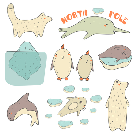 antarctic: Cute hand drawn doodle north pole, antarctic, arctic animals and objects collection, including white bear, penguin, orca, narwhal, seal, walrus, polar fox, iceberg, ice pieces.Polar wild animals icons