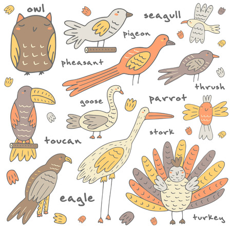 pigeon owl: Cute hand drawn doodle birds collection including owl, pigeon, pheasant, toucan, eagle, goose, stork, seagull, turkey, parrot, thrush. Birds icon Illustration