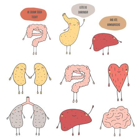 organi interni: Carino mano doodle disegnati organi umani interni tra cui cuore, polmoni, stomaco, fegato, reni, intestino, cervello. dialogo divertente tra gli organi su dieta, cibo e diarrea. organi icona
