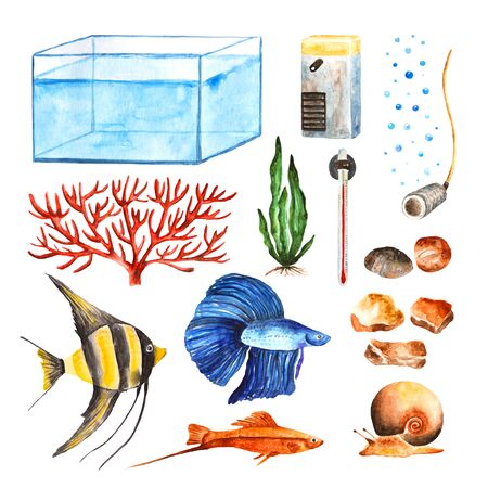 freshwater snails: Watercolor aquarium objects set including coral, seaweed, stones, fish Stock Photo