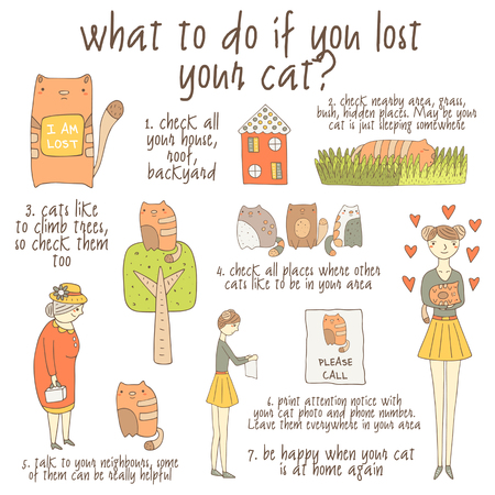 what if: Cute hand drawn doodle instruction about what to do if you lost your cat including cat, girl, old lady, house, tree, grass, poster. Insutruction, tutorial, advice with pictures