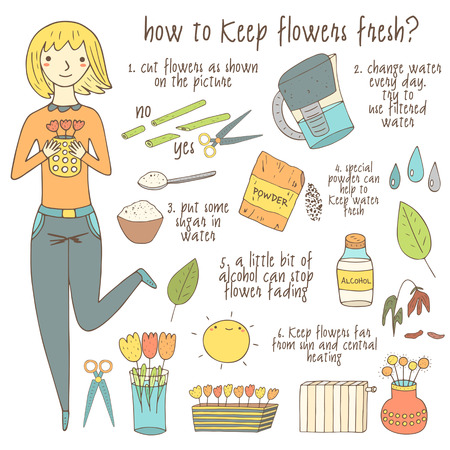 vase of flowers: Cute hand drawn doodle instruction about how to keep flowers fresh including girl, vase, flowers, scissors, water, sugar, filter, alcohol, bottle, sun. Insutruction, tutorial, advice with pictures Illustration