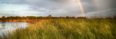 Panorama of the river and field. Fishing rods and feeders are thrown into the water. Banque d'images