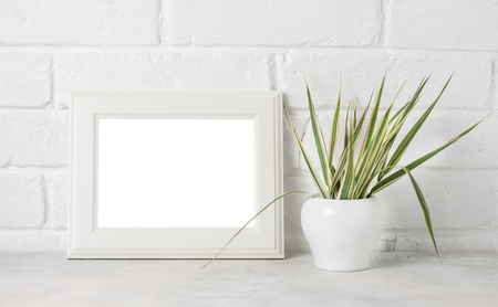 painted wood: White wooden frame with copyspace and greenery on white Brick wall background Stock Photo