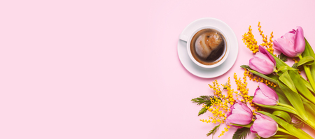 Pink tulips and mimosa flowers with cup of coffee on pink trendy background. Spring greetings. Flat lay, top view