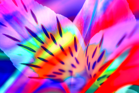 Abstract neon holographic background. 80's style colors. Banco de Imagens - 124797387