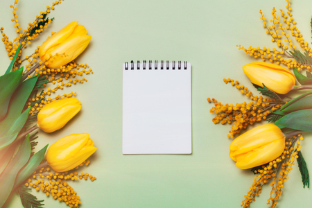 Yellow spring flowers and a note book on green background.