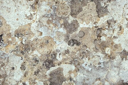 Close up of stone with lichen. Nature background 写真素材 - 133223802