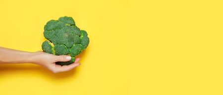 Female hand holding broccoli on yelow background. 写真素材 - 134737875