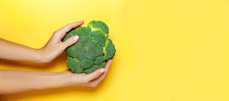 Female hand holding broccoli on yelow background. Minimal vegan concept. Healthy eating. 写真素材