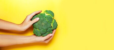 Female hand holding broccoli on yelow background. 写真素材
