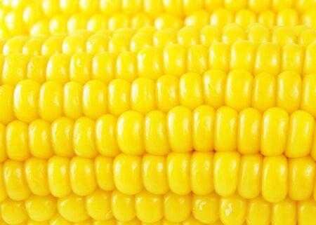 the yellow: golden corn background Stock Photo