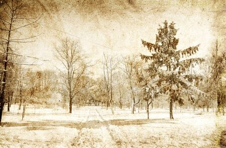 Snowy winter photo