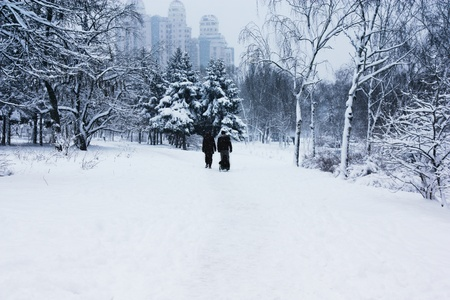 snowing: walking family in snowy park Stock Photo
