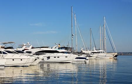 row of white yachts in marina