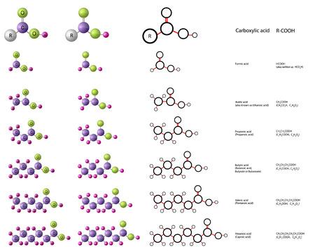 Las moléculas de ácido carboxílico: ácido fórmico, ácido acético, ácido propiónico, ácido valérico, ácido hexanoico
