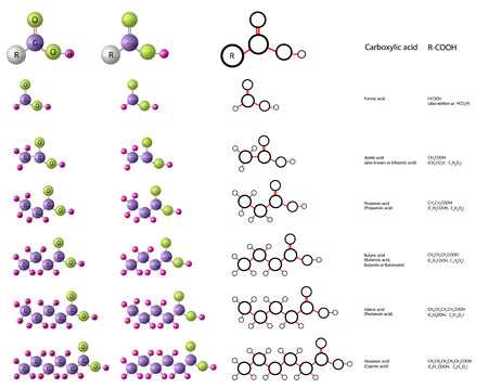Molecules of carboxylic acid: formic acid, acetic acid, propionic acid, valeric acid, hexanoic acid