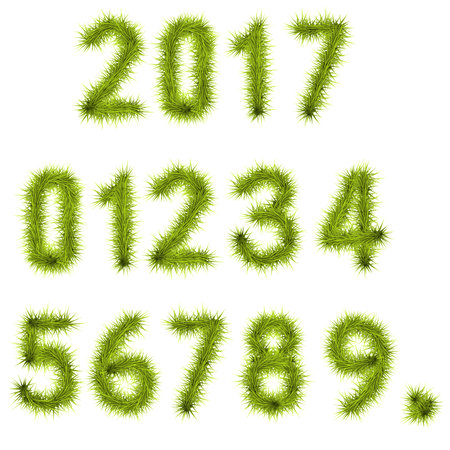 six point: Collection of vector numbers decorated with pine branches