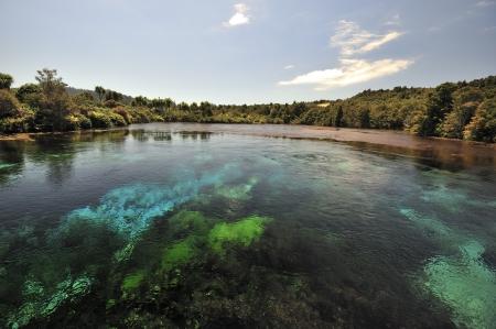 Te Waikoropupu Springs at Takaka, New Zealand