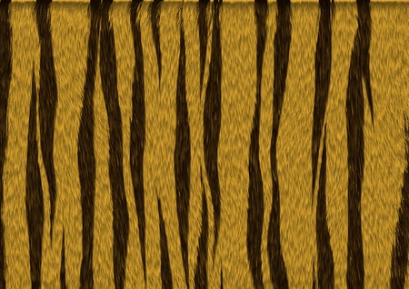 Texture of tiger fur with stripes Stock Photo - 21463539