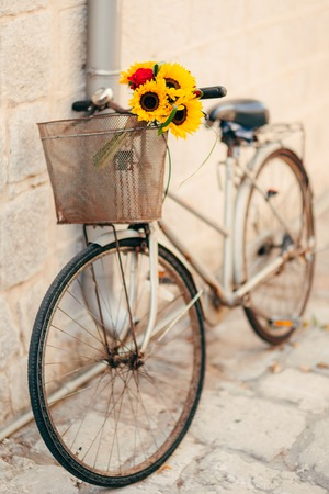 Wedding bridal bouquet of sunflowers in the basket of the bicycle. Wedding in Montenegro, Perast. Stock Photo