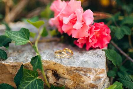 Wedding rings on the stones in the grass, ivy and oleander branch. Wedding jewelry.