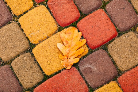 Orange and yellow flagstones, cobbles. Autumn shades