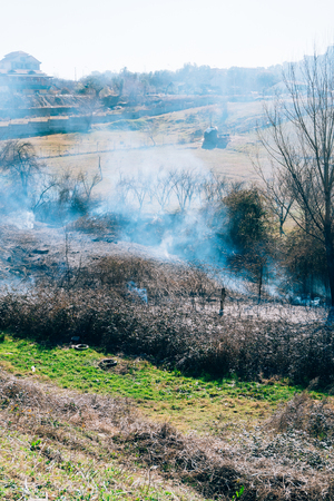 Fire in the woods in the afternoon. Albanian forest is burning near the highway.