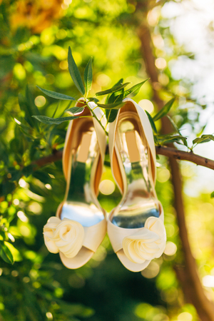 Wedding shoes of the bride hang on a branch of an olive tree, a wedding in Montenegro.
