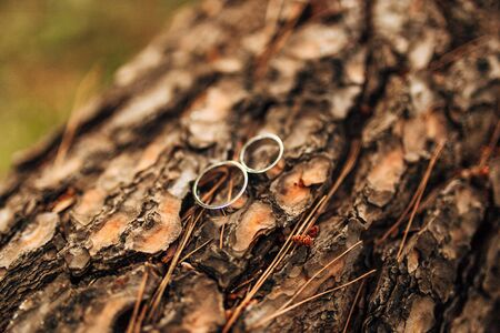 platinum: Gold wedding rings on a wooden background Stock Photo