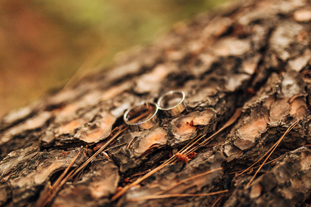 rendered: Gold wedding rings on a wooden background Stock Photo