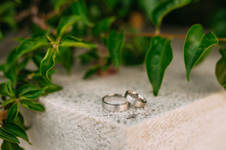 Wedding rings on the stones in the grass. Wedding in Montenegro. Stock Photo