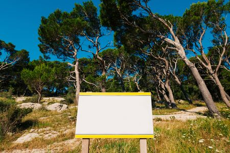 Board for inscriptions in the forest. Montenegro Stock Photo