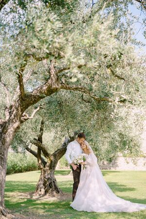 A wedding couple is standing under an olive tree. The bride and groom are walking in an olive grove. Wedding in Florence, Italy, in an old villa-winery.
