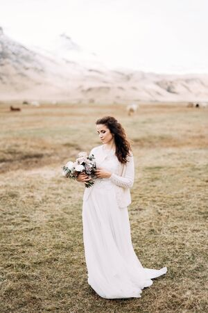 Portrait of a bride in a white wedding dress, with a brides bouquet in her hands. In a field of dry yellow grass, amid a snowy mountain and grazing Icelandic horses. Destination Iceland wedding. Stockfoto