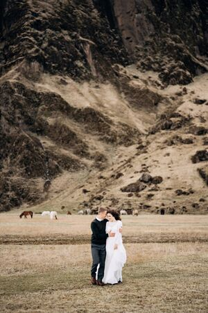 Wedding couple on the background of a rocky mountain and grazing horses in Iceland. The bride and groom are walking on the field holding hands. Banco de Imagens