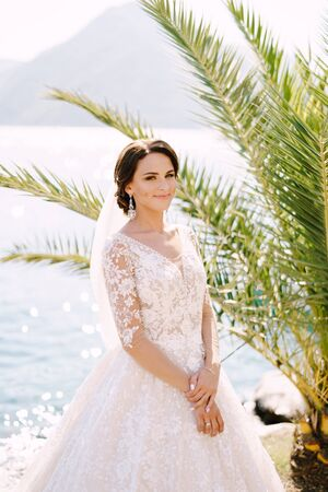 Portrait of a bride in a cream dress under a palm tree on a background of the sea. Fine-art wedding photo in Montenegro, Perast. Banque d'images