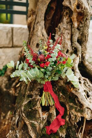 bridal bouquet of burgundy peonies, red roses, eucalyptus tree branches, eryngium, baby breath, celosia and red ribbons on the olive tree