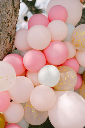 Close-up of many helium balloons in pastel colors. Standard-Bild
