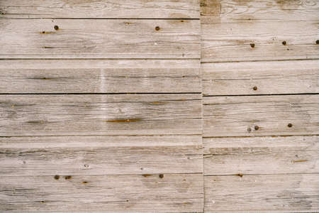 Texture of gray old wooden planks with rusty bolts.
