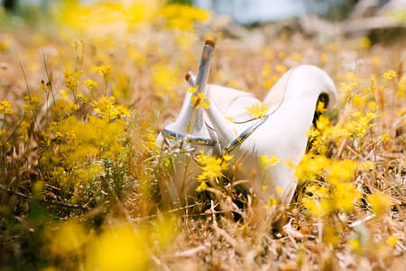 White wedding shoes of the bride in dry grass with yellow wildflowers lie with heels up, heels crossed.